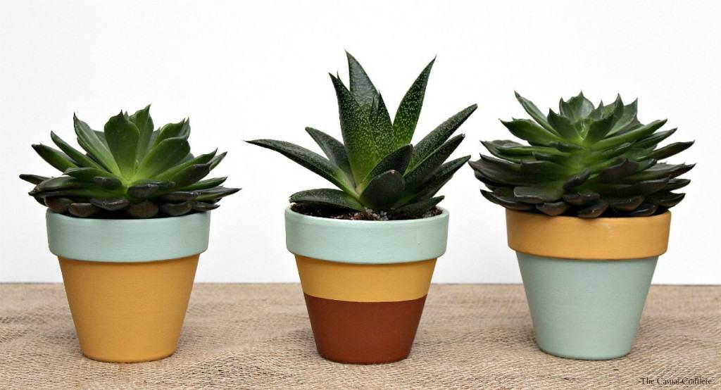 Mint & Mustard Painted Succulent Pots