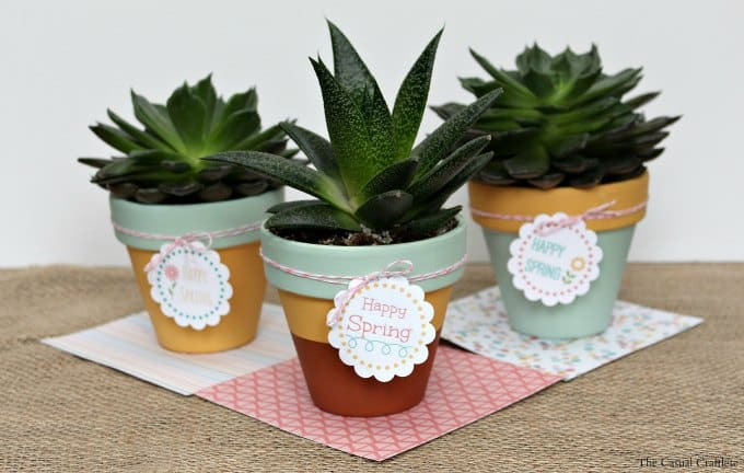 Mint & Mustard Painted Succulent Pots {plus} FREE Printable Happy Spring Tags