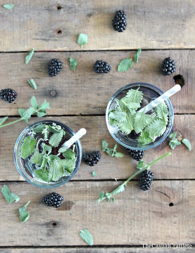 Blackberry Mint Infused Water www.thecasualcraftlete.com