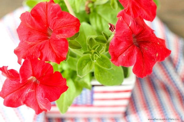 Patriotic Flower Arrangement