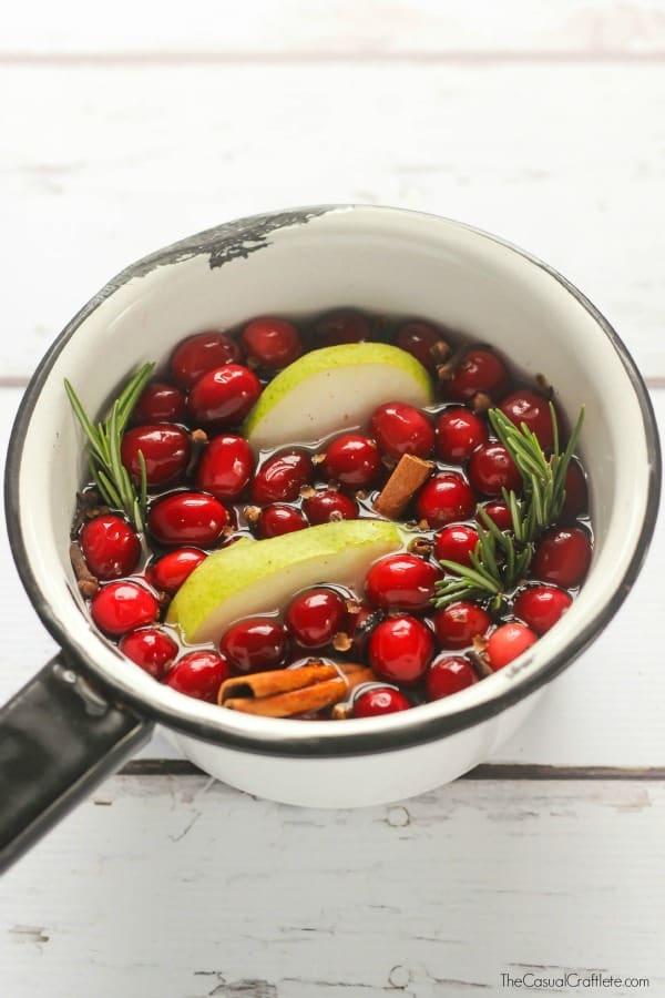 Cranberry Stove Top Potpourri