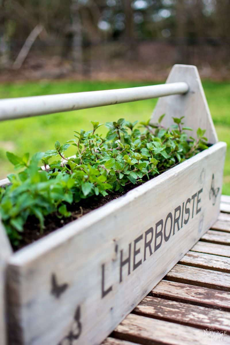 Toolbox-to-Planter-028