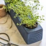 featured image - herb planter