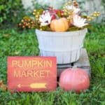 featured-image-pumpkin-market-decor