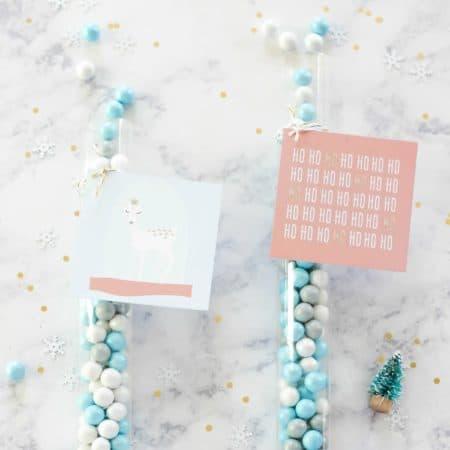 Free Printable Whimsical Holiday Gift Tags